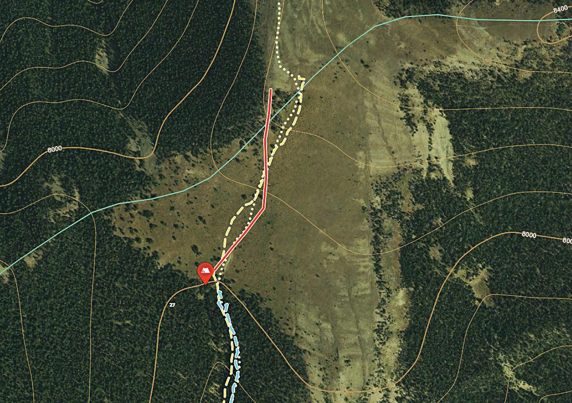 Tracks from a recent horseback hunt