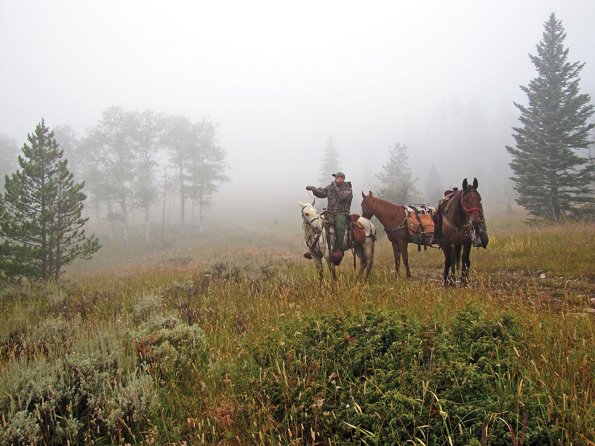 horseback hunting in the fog.