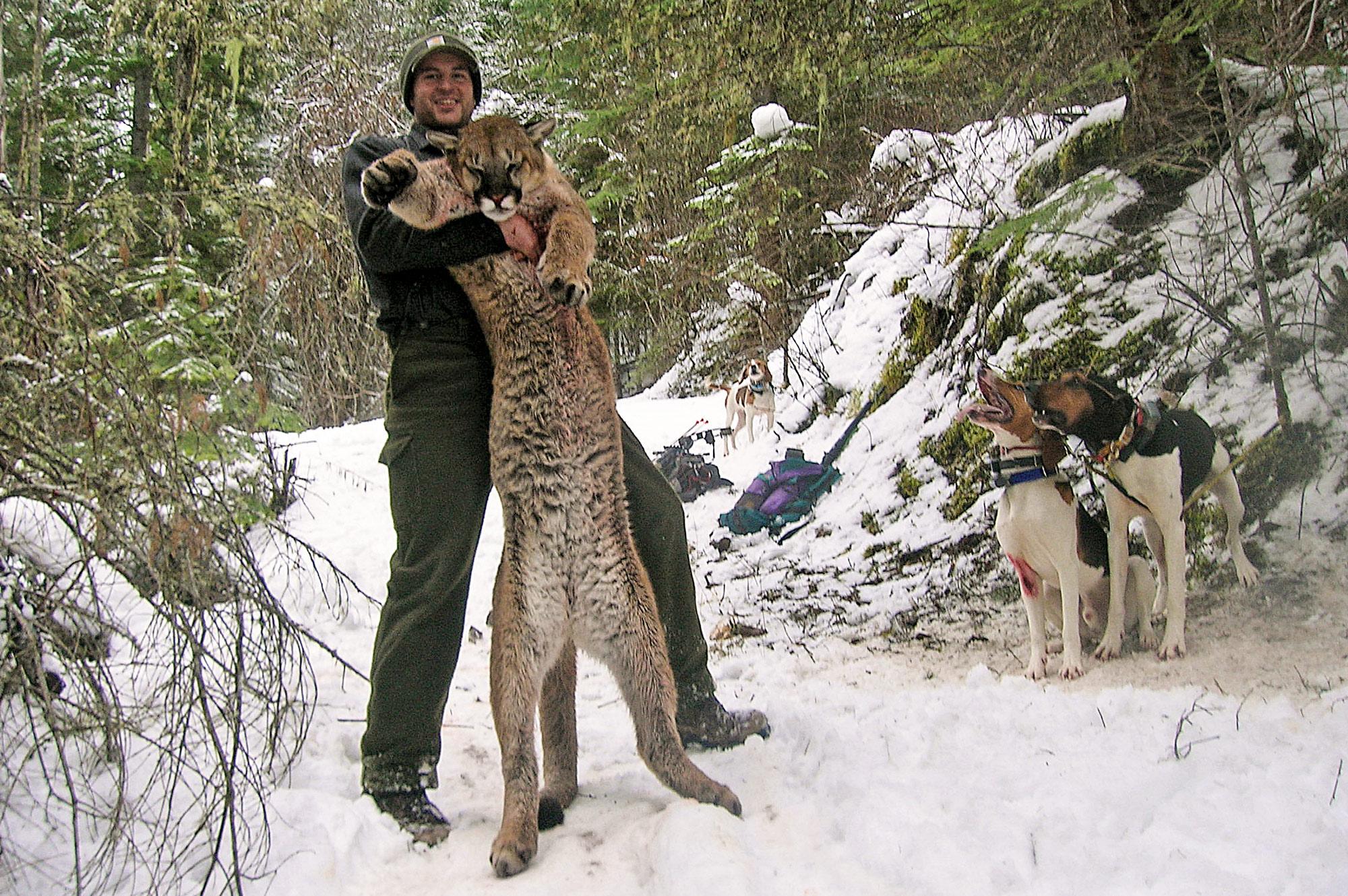 Kyle Greene with a nice tom he got while mountain lion hunitng.