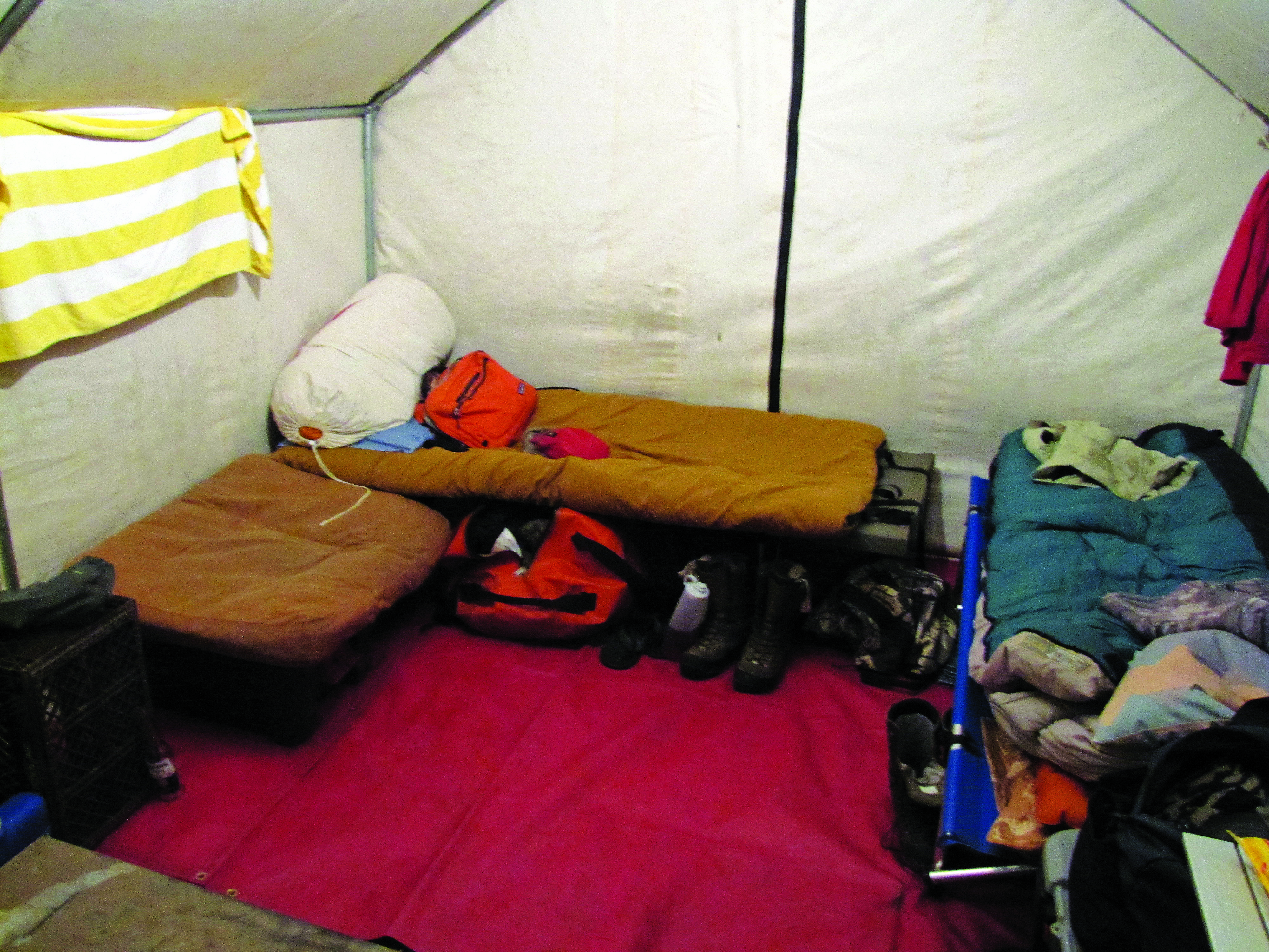 A cot set up in a canvas wall tent